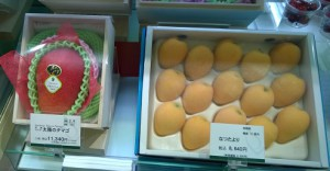 dyr-frugt-tokyo